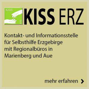 Einladung zur Vorstellung der Selbsthilfe-App für Sachsen @ Steinhaus e. V.